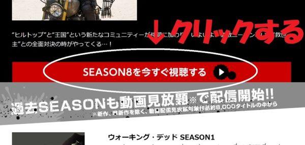 シーズン8の情報