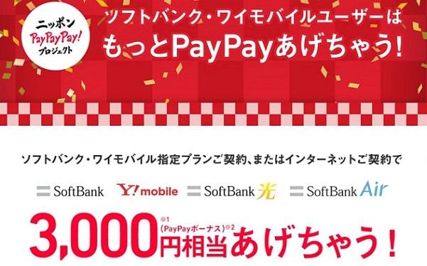 いい買い物の日でpaypayを3000円分還元あり